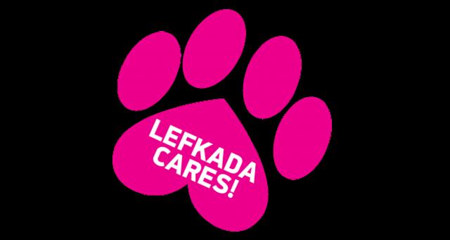 Εργαστήριο για την ευαισθητοποίηση και την καλύτερη διαχείρηση των αδέσποτων ζώων