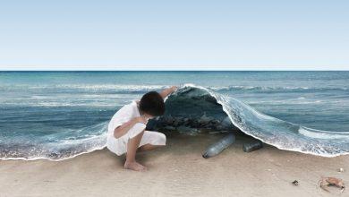Εθελοντική δράση «Βουτάμε για καθαρισμό» από το Επιμελητήριο Λευκάδας