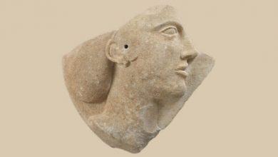 Οι Έλληνες πήραν τα όπλα για την ομορφιά