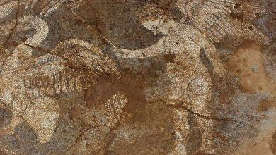 Στο φως εντυπωσιακό ψηφιδωτό από τον 4ο π.X. αιώνα