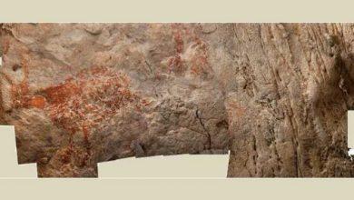 Στο Βόρνεο τα αρχαιότερα δείγματα ζωγραφικής