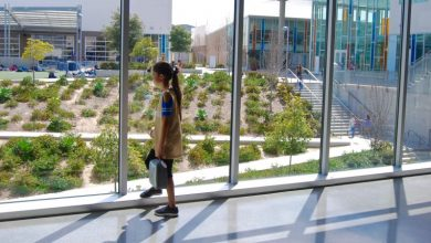 Designing a public school from scratch