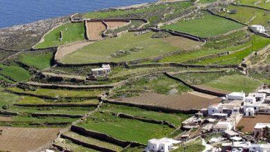 Η τέχνη της ξερολιθιάς, οι παραδοσιακές πεζούλες, στον κατάλογο Πολιτιστικής Κληρονομιάς της UNESCO!