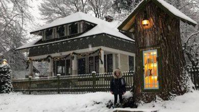 Έφτιαξε βιβλιοθήκη για όλη τη γειτονιά μέσα σε δέντρο που σάπιζε