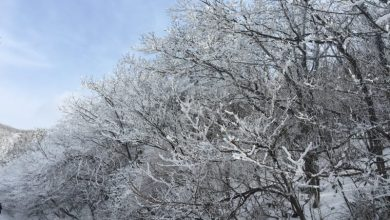 Κλειστά την Τετάρτη 9 Ιανουαρίου τα νηπιαγωγεία και τα σχολεία της ορεινής Λευκάδας
