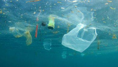 Εκπαίδευση ομάδας αντιμετώπισης θαλάσσιας ρύπανσης από το Δημοτικό Λιμενικό Ταμείο Λευκάδας