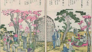 Hokusai και άλλοι μεγαλοφυείς Ιάπωνες καλλιτέχνες σε μια μοναδική έκθεση στην Αθήνα