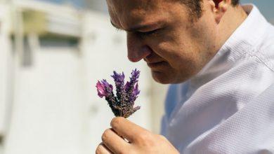 17 βασικά βότανα της ελληνικής γης και πώς να τα χρησιμοποιείτε στη μαγειρική