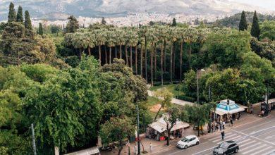 Τα δέντρα του Εθνικού Κήπου καταγράφονται ψηφιακά για πρώτη φορά