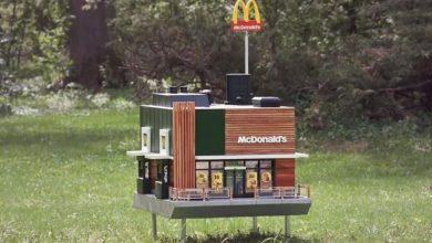 McHive: το μικρότερο McDonald's στον κόσμο είναι για… μέλισσες