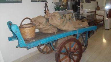 Το μουσείο Λευκαδικού Πολιτισμού του «Ορφέα» γιορτάζει τη Διεθνή Ημέρα Μουσείων