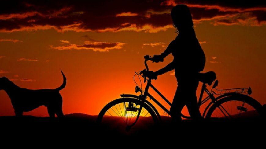 Παγκόσμια ημέρα ποδηλάτου: 3 Ιουνίου
