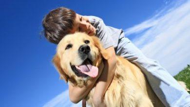 Έχετε σκύλο; Αν ναι, είναι θέμα γονιδίων!