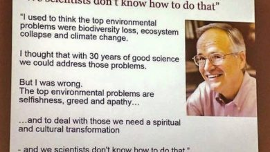 The environmental crisis is not environmental. It is spiritual