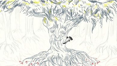 The fascinating science of how trees communicate, animated
