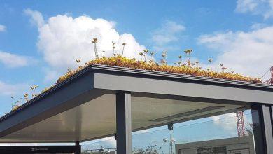 Η Ολλανδία ανοίγει «δρόμους» για τις μέλισσες