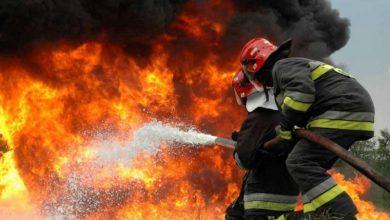 Δήμος Λευκάδας: Οδηγίες προστασίας από δασικές πυρκαγιές