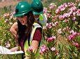 Πώς τα Μεταλλεία Κασσάνδρας έγιναν case study περιβαλλοντικής διαχείρισης