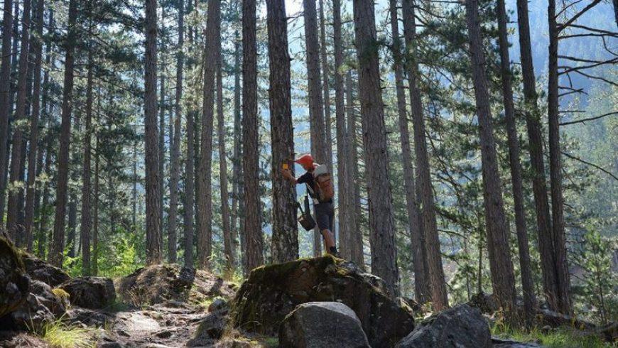 Pindus Trail: Ένα μονοπάτι 600 χιλιομέτρων από τις Πρέσπες στους Δελφούς