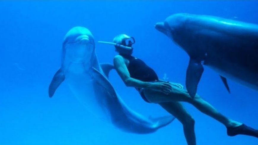 CineDoc Island: Το ντοκιμαντέρ «Dolphin Man» στην Κινηματογραφική Λέσχη του Ορφέα