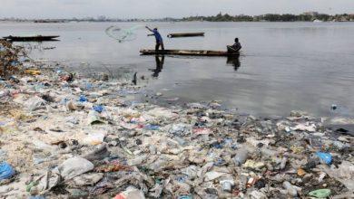 Άνθρωποι και ζώα «πνιγόμαστε» στο πλαστικό