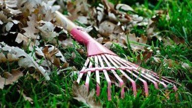 Καθαρισμός οικοπεδικών και λοιπών ακάλυπτων χώρων