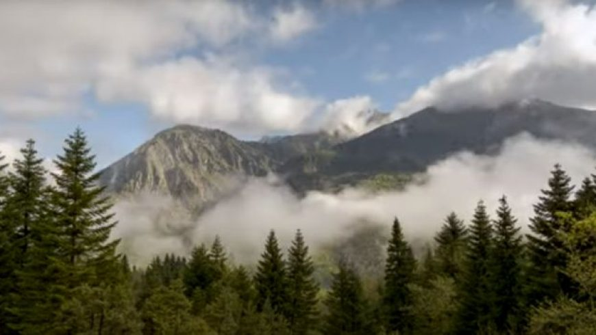 Μέσα στα ήρεμα δάση της Ηπείρου