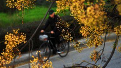 Πρώτη «Bike Friendly» Περιφέρεια της χώρας η Θεσσαλία