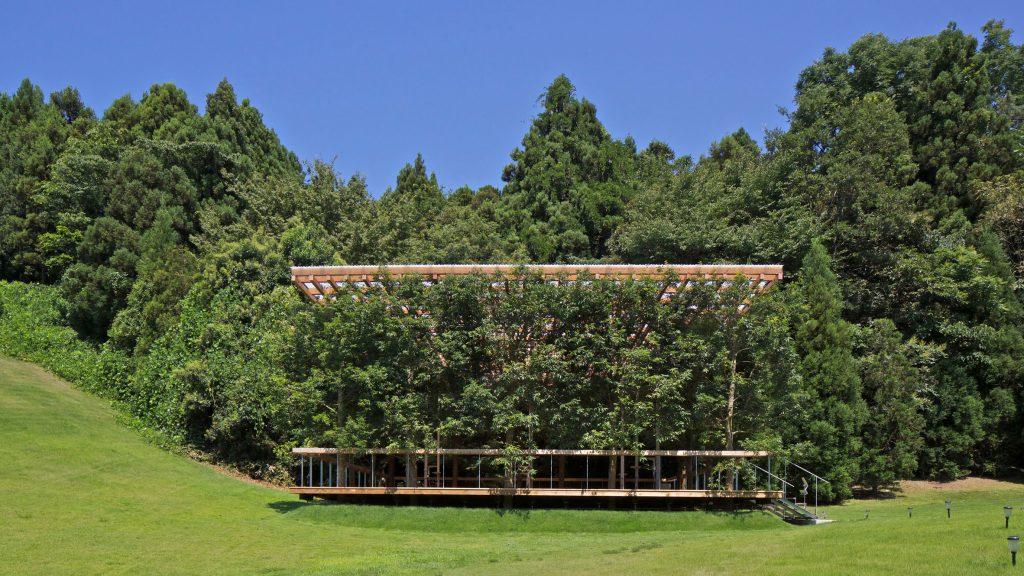 Το μοναδικό φουαγέ ενός υπαίθριου θεάτρου, ένα μικρό δάσος στη φύση
