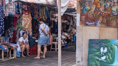 Καταστροφή βιοτόπων λόγω κατακρήμνισης του τουρισμού