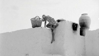 Ελύτης: Σώμα του καλοκαιριού