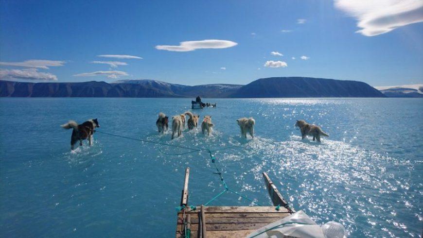 Κλιματική αλλαγή: Το πιο καυτό καλοκαίρι όλων των εποχών για το βόρειο ημισφαίριο