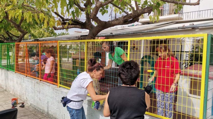 Δράση Δικτύου Εθελοντών Δήμου Λευκάδας