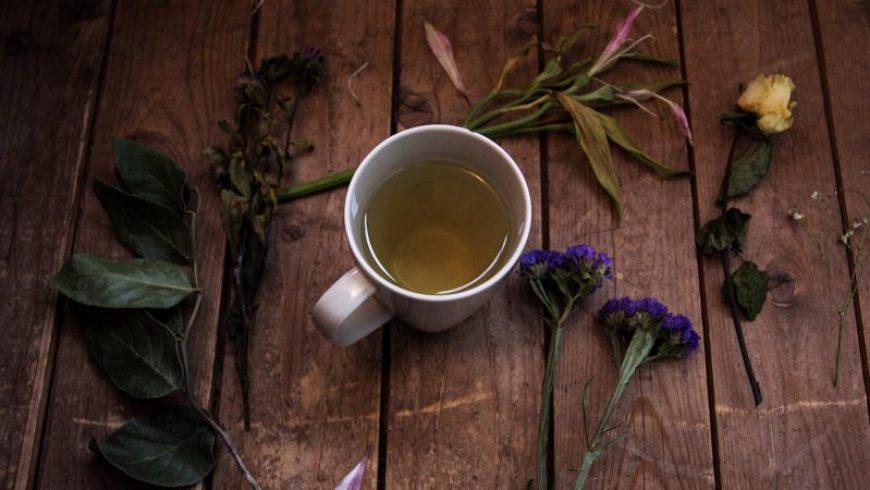 Βότανα που τονώνουν το ανοσοποιητικό
