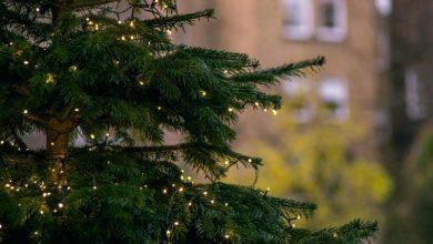 Φωταγώγηση του Χριστουγεννιάτικου δέντρου στην Κεντρική Πλατεία της Λευκάδας