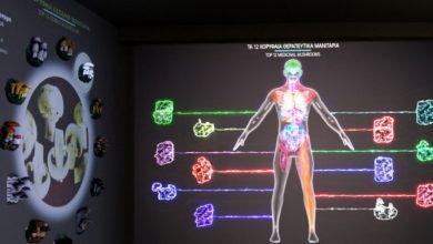 Κι άλλο βραβείο για το Μουσείο Μανιταριών στα Μετέωρα -Το πρωτοποριακό σύστημα που μιλά για τη διατροφή