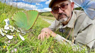 Dr Dan Danahar: «Μετράμε πεταλούδες, γιατί δεν θέλουμε να χάσουμε την ψυχή μας»