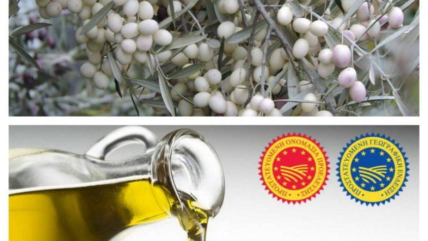 Π.Ε. Λευκάδας: Εγκρίθηκε η Προγραμματική για την Ασπρολιά ΠΟΠ-ΠΓΕ
