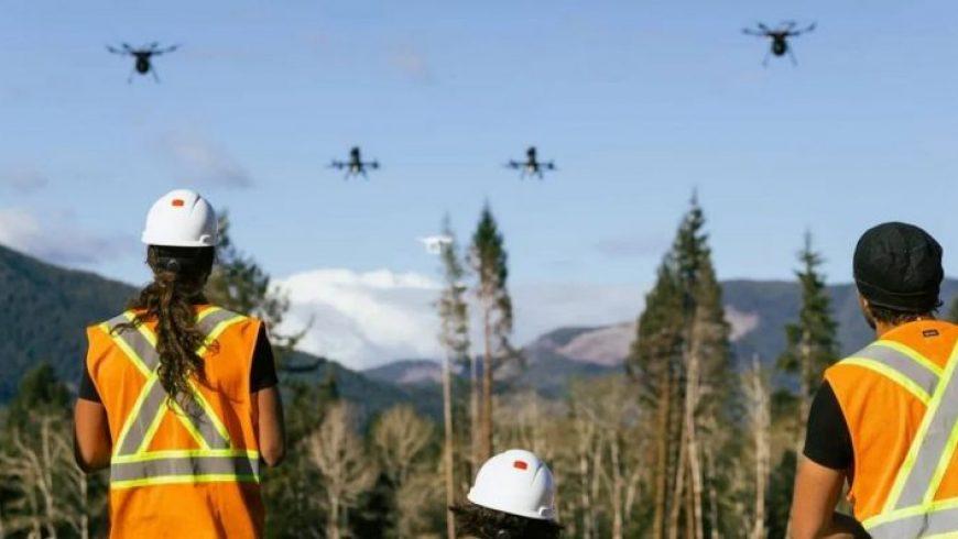 Αναδάσωση με drones: Startup θέλει να φυτεύει 40.000 δέντρα το μήνα – Πώς η νέα τεχνολογία μπορεί να βοηθήσει