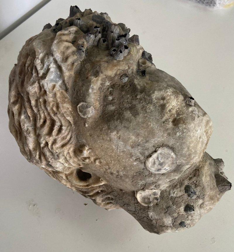 Ρωμαϊκή κεφαλή ανασύρθηκε από τη θάλασσα της Πρέβεζας